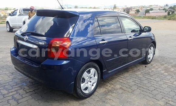 Buy Used Toyota Runx Blue Car in Windhoek in Namibia
