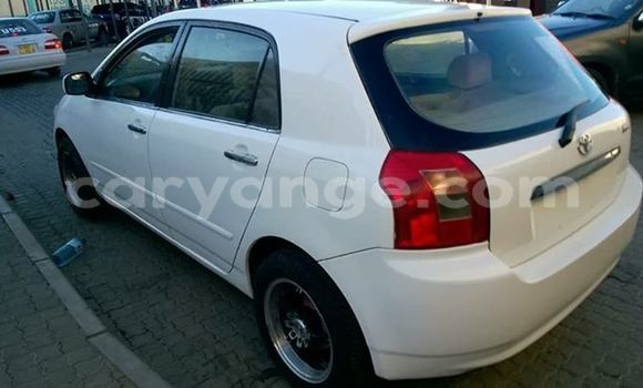 Buy Used Toyota Runx White Car in Windhoek in Namibia