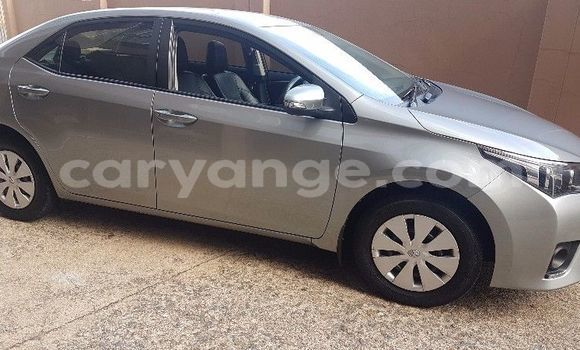Buy Used Toyota Corolla Silver Car in Walvis Bay in Namibia