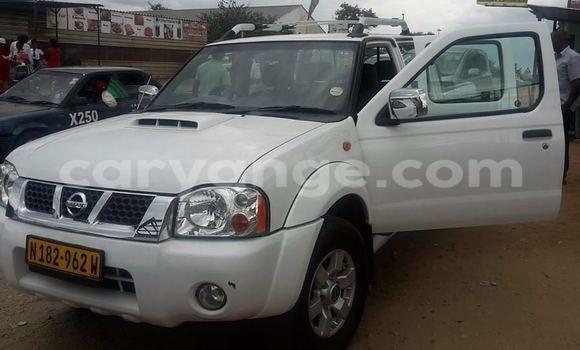 Buy Used Nissan Navara White Car in Windhoek in Namibia