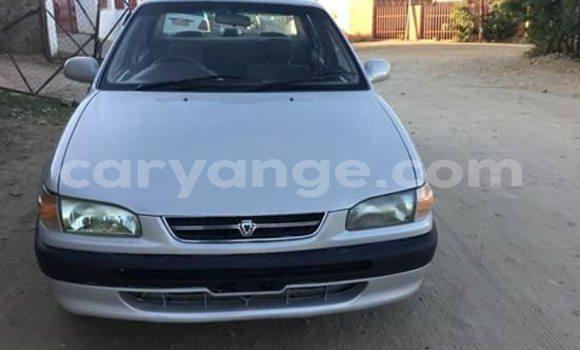 Buy Used Toyota Corolla Silver Car in Otjiwarongo in Namibia