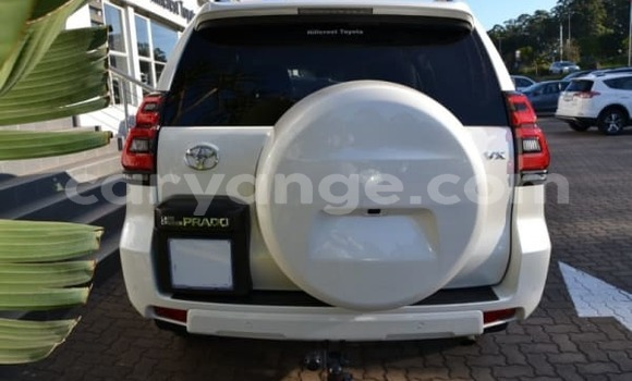 Buy Used Toyota Prado White Car in Oshakati in Namibia