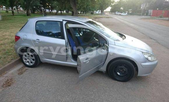 Buy Used Peugeot 307 Silver Car in Tsumeb in Oshikoto