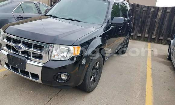 Buy Used Ford Escape Black Car in Kuisebmond in Erongo
