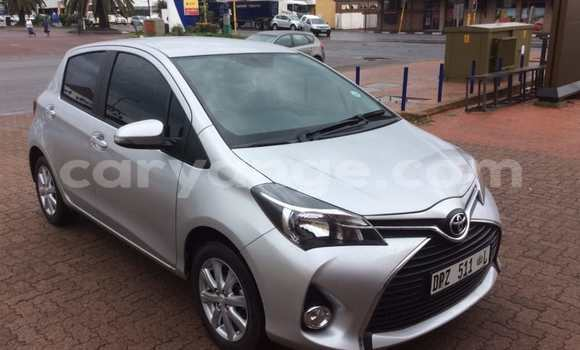 Buy Used Toyota Yaris Silver Car in Windhoek in Namibia
