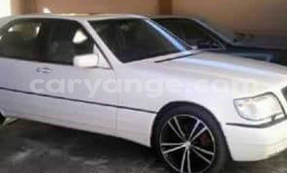 Buy Used Mercedes‒Benz S–Class White Car in Windhoek in Namibia