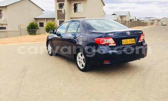 Buy Used Toyota Corolla Blue Car in Windhoek in Namibia