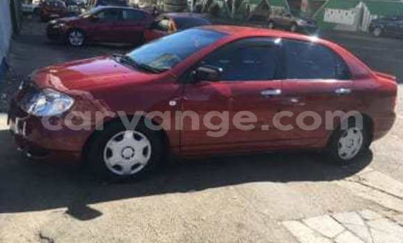 Buy Used Toyota Corolla Red Car in Swakopmund in Namibia