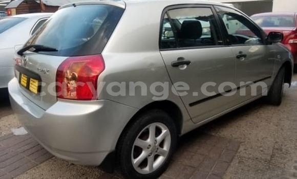Buy Used Toyota Runx Silver Car in Walvis Bay in Namibia
