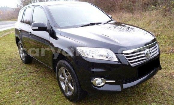 Buy Imported Toyota RAV4 Black Car in Karibib in Erongo