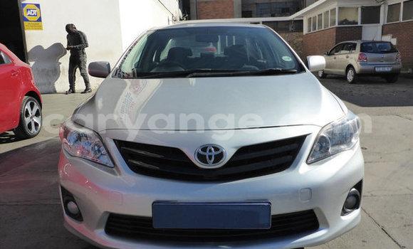Buy Used Toyota Corolla Silver Car in Khorixas in Kunene
