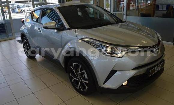 Buy Used Toyota C-HR Silver Car in Windhoek in Namibia