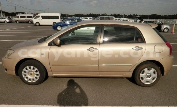 Buy Used Toyota Allex Other Car in Windhoek in Namibia