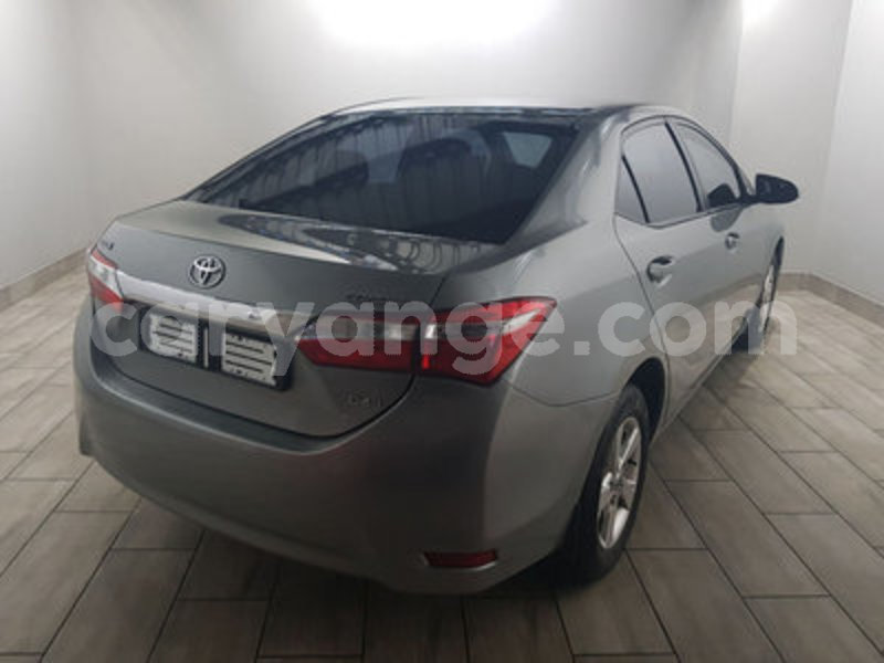 Big with watermark toyota corolla 2