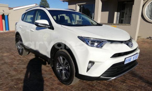 Buy Used Toyota RAV 4 White Car in Leonardville in Omaheke