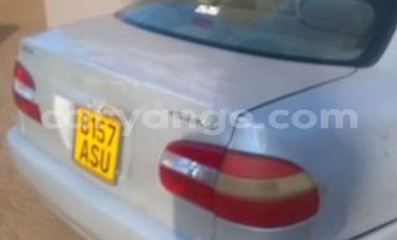 Buy Used Toyota 4Runner White Car in Windhoek in Namibia