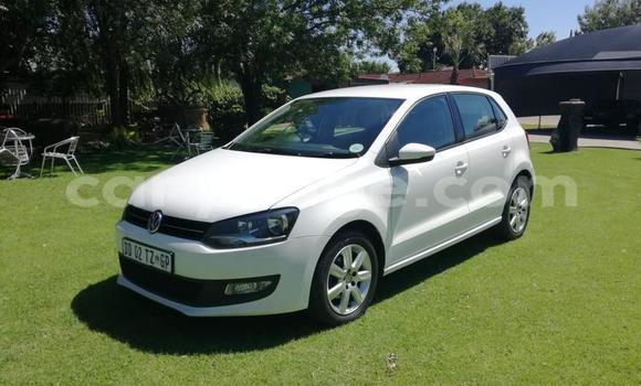 Buy Used Volkswagen Polo White Car in Arandis in Kunene