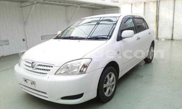 Buy Used Toyota Runx White Car in Leonardville in Omaheke