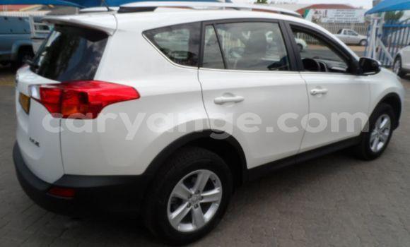 Buy Used Toyota RAV4 White Car in Henties Bay in Erongo