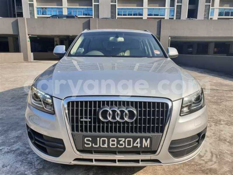 Big with watermark 2009 audi q5 1