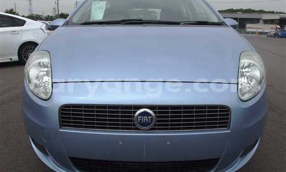 Buy Used Fiat Punto Blue Car in Bethanien in Karas