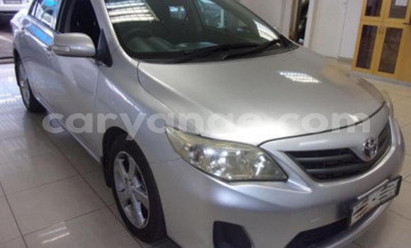 Buy Used Toyota Corolla Other Car in Arandis in Kunene