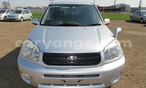Buy Used Toyota RAV4 Silver Car in Windhoek in Namibia