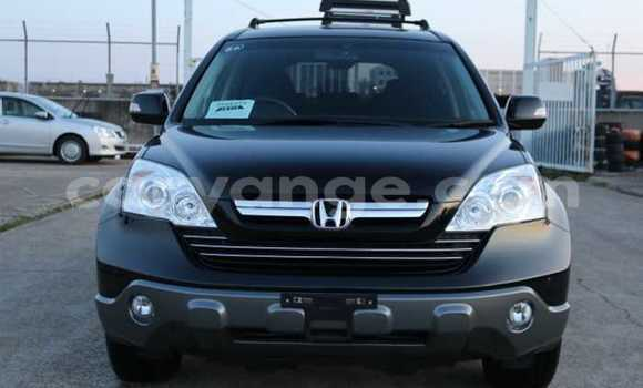 Buy Used Honda CR–V Black Car in Otjiwarongo in Namibia
