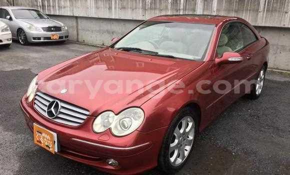 Buy Used Mercedes-Benz CLK-klasse Red Car in Tsumeb in Oshikoto