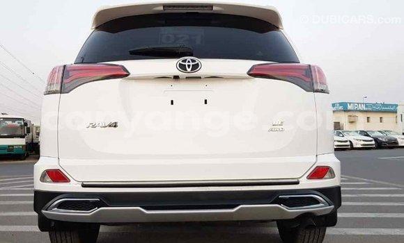 Buy Import Toyota RAV4 White Car in Import - Dubai in Namibia