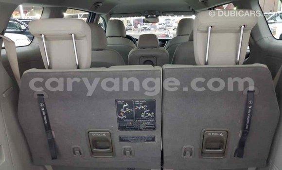 Buy Import Kia Carnival Other Car in Import - Dubai in Namibia