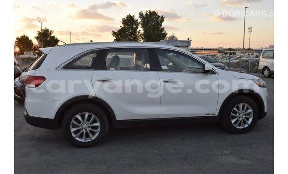 Buy Import Kia Sorento White Car in Import - Dubai in Namibia