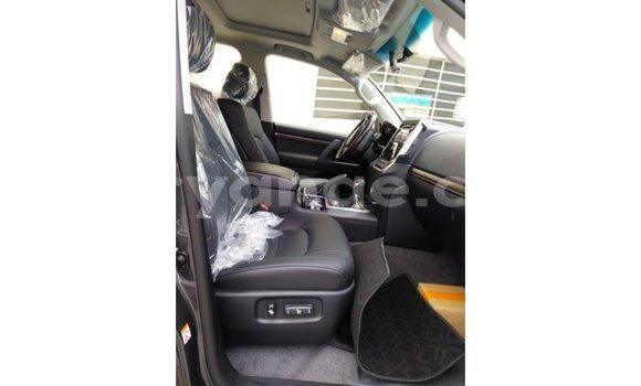 Buy Import Toyota Land Cruiser Brown Car in Import - Dubai in Namibia