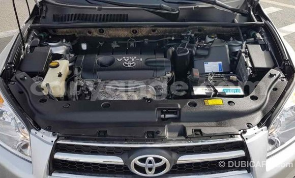 Buy Import Toyota RAV 4 Other Car in Import - Dubai in Namibia