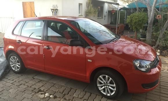 Buy Used Volkswagen Polo Red Car in Windhoek in Namibia