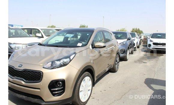 Buy Import Kia Sportage Black Car in Import - Dubai in Namibia