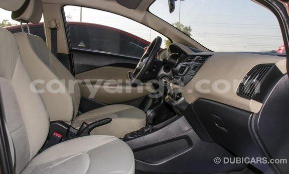 Buy Import Kia Rio Brown Car in Import - Dubai in Namibia