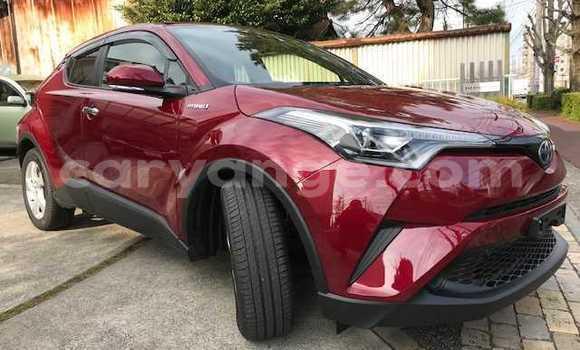 Buy Used Toyota C-HR Red Car in Otavi in Oshikoto