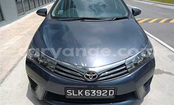 Buy Used Toyota Corolla Other Car in Kuisebmond in Erongo