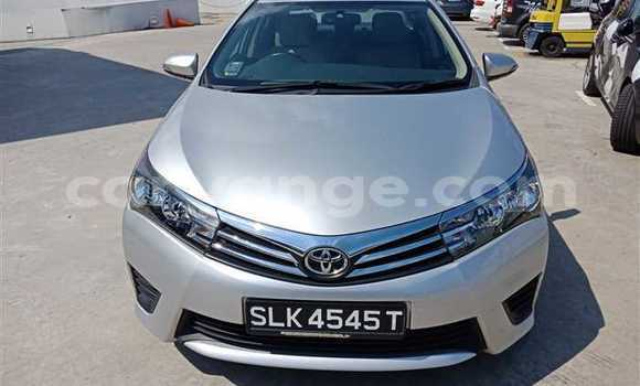 Buy Used Toyota Corolla Silver Car in Otavi in Oshikoto