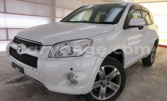Buy Used Toyota RAV4 White Car in Omaruru in Erongo