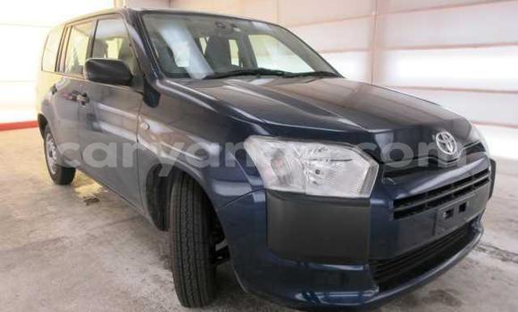 Buy Used Toyota Probox Black Car in Karibib in Erongo