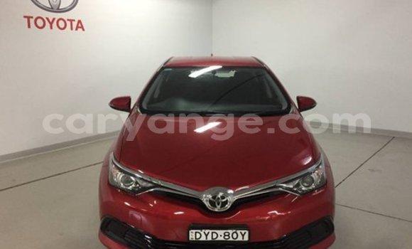 Buy Used Toyota Corolla Red Car in Karibib in Erongo