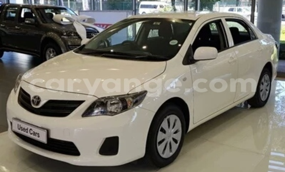 Buy Used Toyota Corolla White Car in Walvis Bay in Namibia