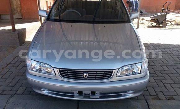 Buy Used Toyota Duet Silver Car in Windhoek in Namibia