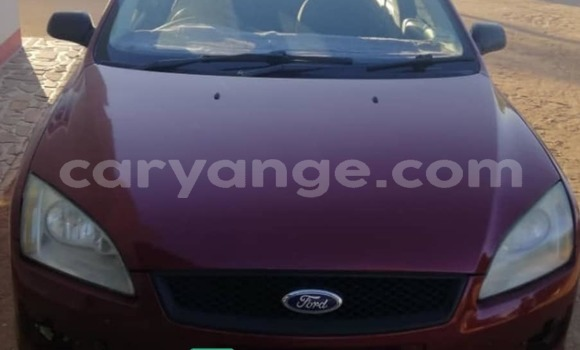 Buy Used Ford Focus Red Car in Windhoek in Namibia