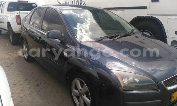 Buy Used Ford Focus Black Car in Windhoek in Namibia