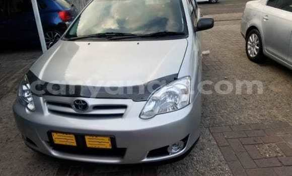 Buy Used Toyota Runx Silver Car in Rundu in Namibia
