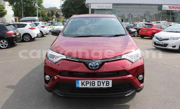 Buy Used Toyota RAV4 Red Car in Okakarara in Otjozondjupa