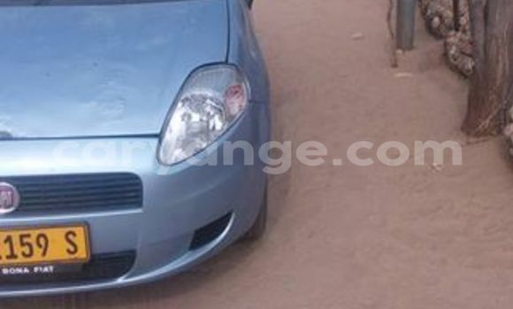 Buy Used Fiat Punto Black Car in Windhoek in Namibia
